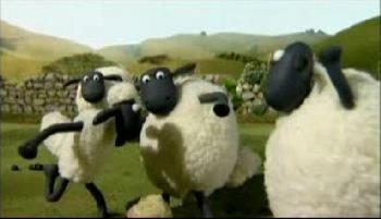 羊5.jpg